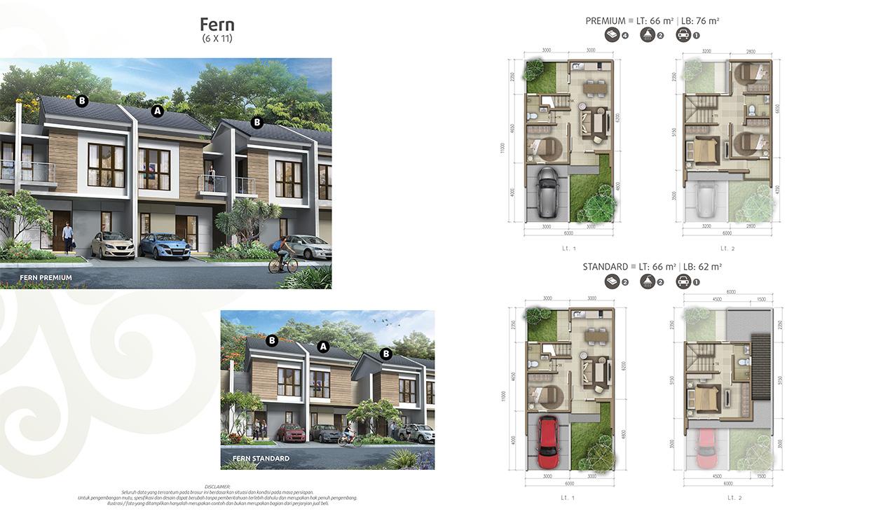 fern-6x11