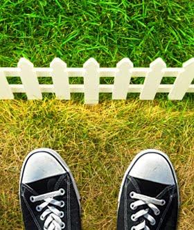 8-cara-agar-rumput-kita-lebih-hijau-dari-tetangga