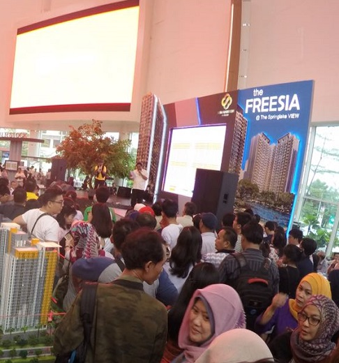 the-freesia-expo-2016-6a