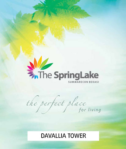 Davallia The SpringLake Brochure