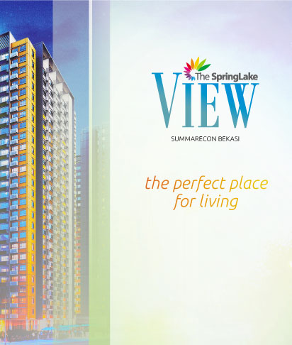 The Springlake View Brochure